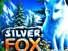 Silver Fox - игровые аппараты
